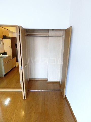 グランシャリオ箱崎 505号室の収納