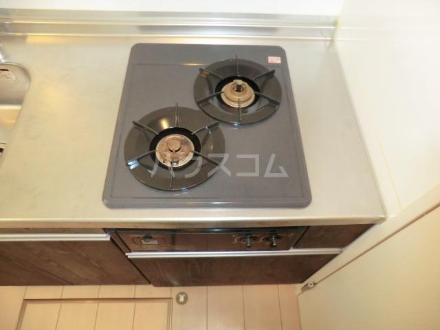 メゾン・ド・レスポアール 201号室のキッチン