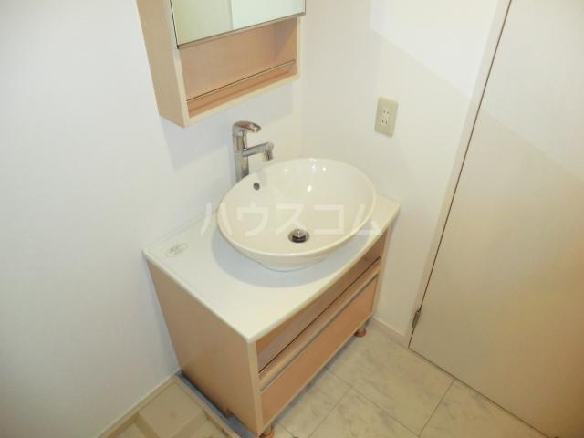 メゾン・ド・レスポアール 201号室の洗面所