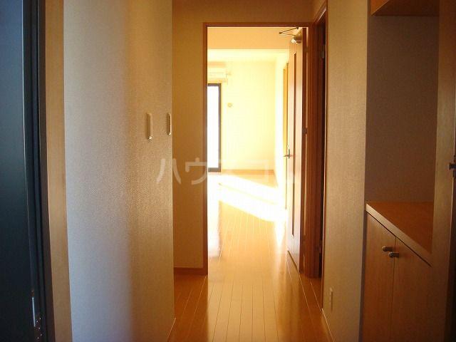 リヴィエール・イル 306号室の玄関