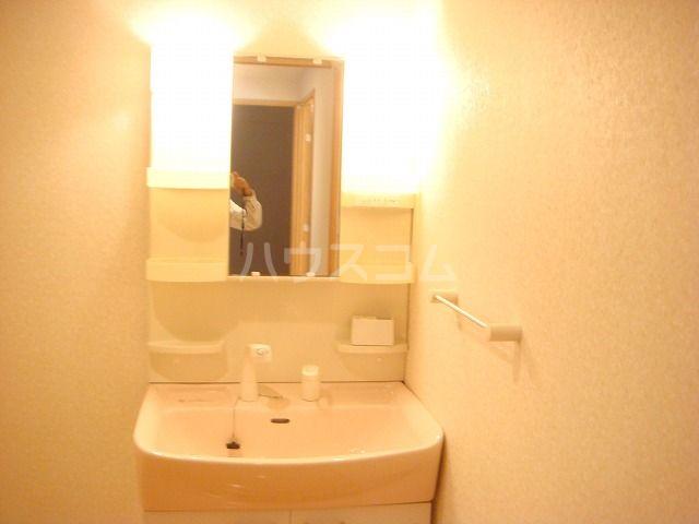 リヴィエール・イル 306号室の洗面所