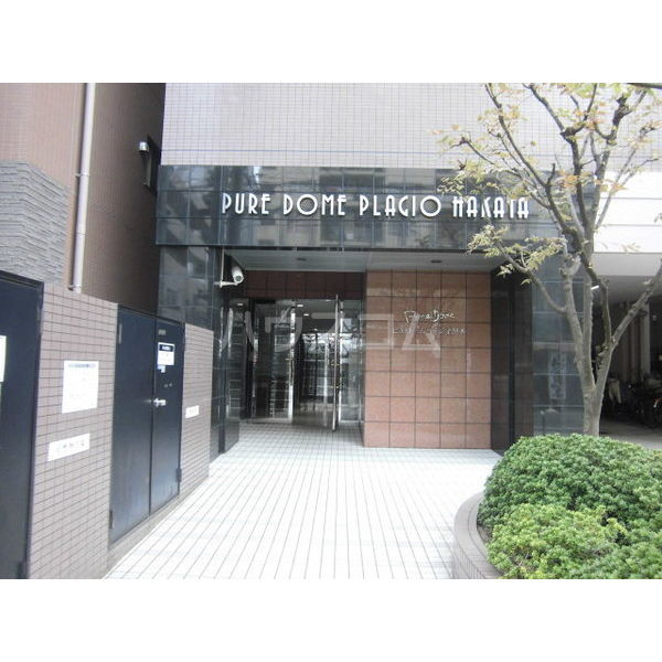 ピュアドームパラジオ博多 1203号室のエントランス