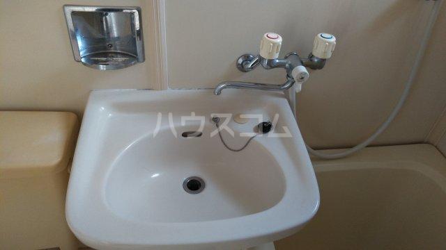 メゾンサヴェール 202号室の洗面所