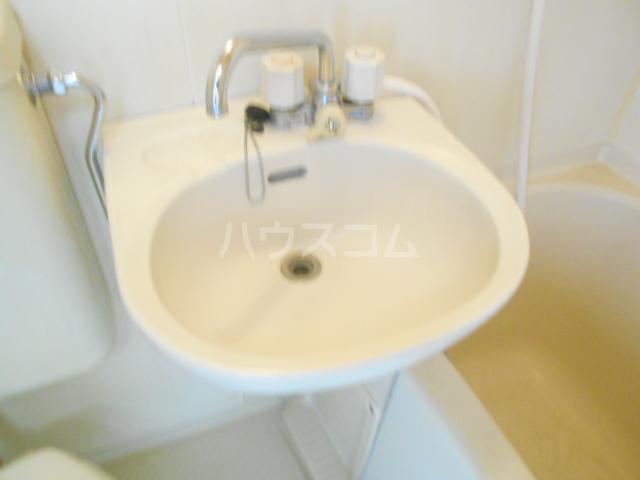 リバーサイドヴィラ 102号室の洗面所