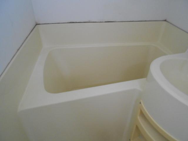 ヴィラ永山 202号室の風呂