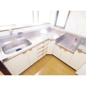 エルベマノワール 110号室のキッチン