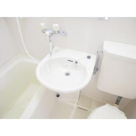 エクセルホワイト与野 201号室の洗面所