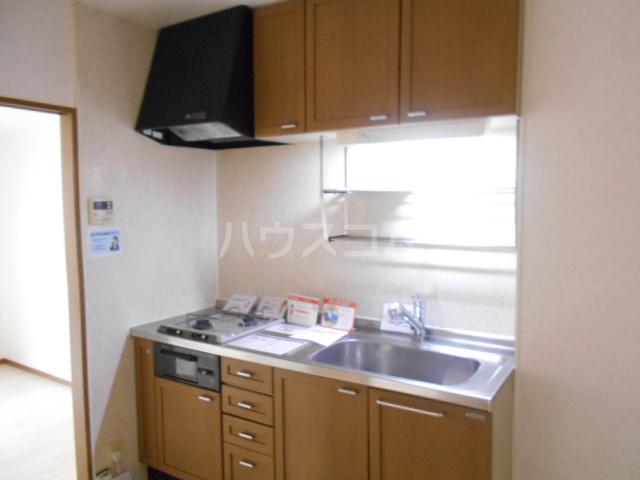 シャネルI&S 101号室のキッチン