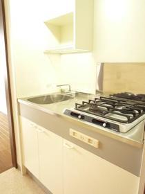 エムワン洗足 203号室のキッチン