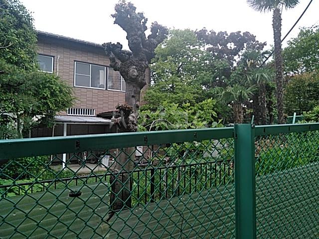 ビュー大岡山 103号室の景色