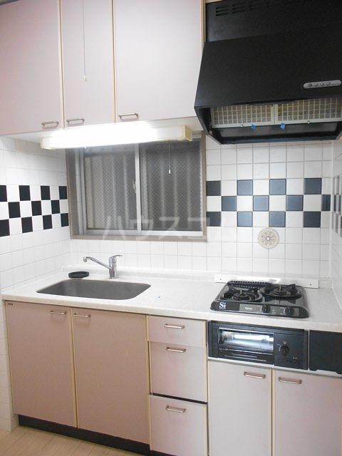 メゾン・ドゥ・ラ・ロゼ 203号室のキッチン