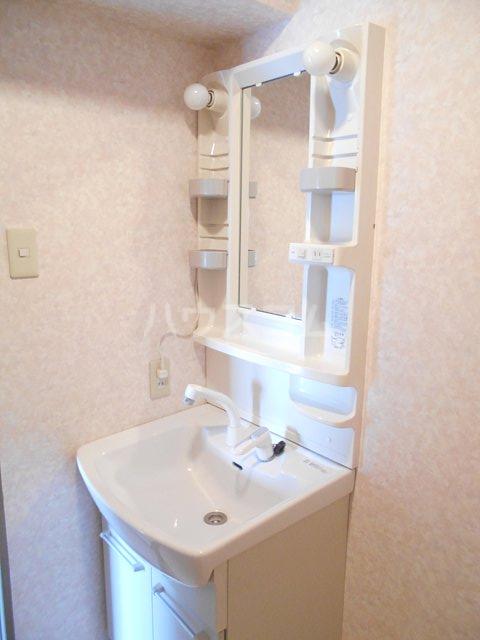 メゾン・ドゥ・ラ・ロゼ 203号室の洗面所