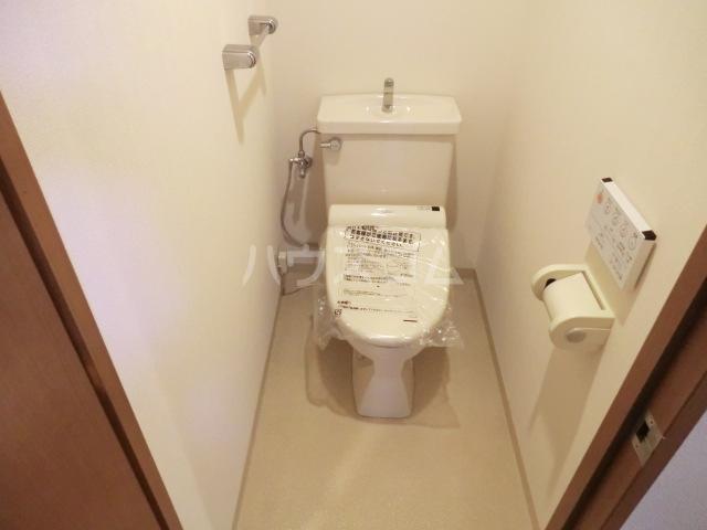 グランデュオ南街区 304号室のトイレ