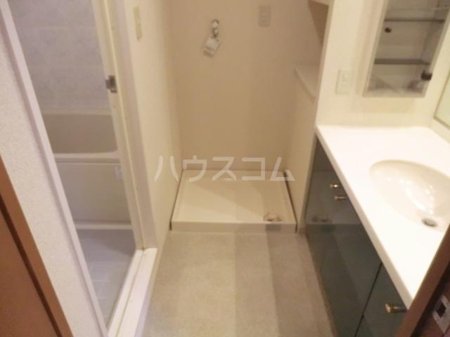 グランデュオ南街区 304号室の洗面所