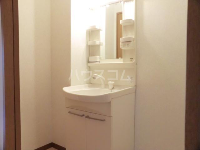 シャテロ北浦和 203号室の洗面所