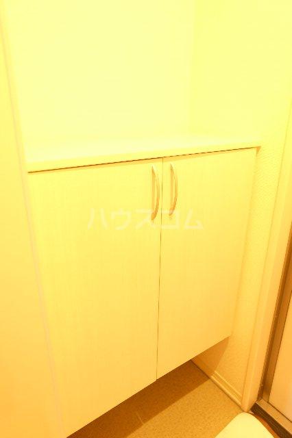 セラ 303号室の玄関