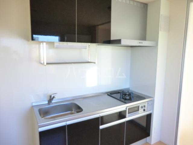 SERIKA 303号室のキッチン