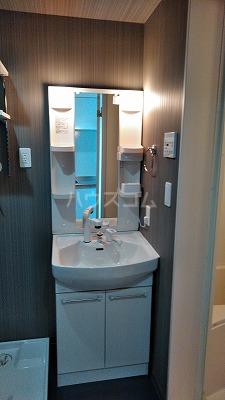 フェリオ与野 305号室の洗面所