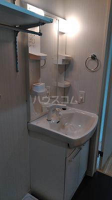 ラ・ルーチェ与野 103号室の洗面所