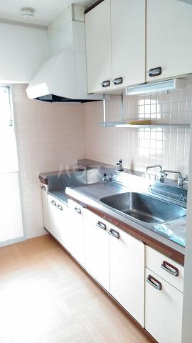 パームハイツI 401号室のキッチン