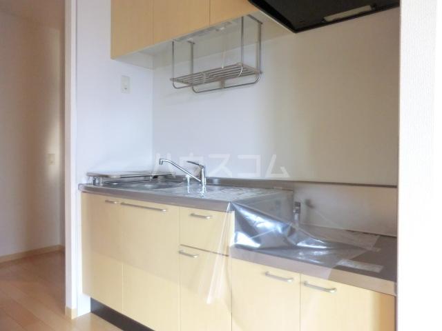ルミエールヤマダ 202号室のキッチン