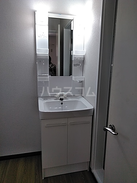 chenonceau(シュノンソウ) 101号室の洗面所