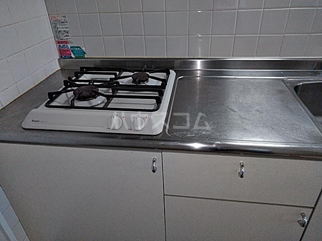 chenonceau(シュノンソウ) 101号室のキッチン