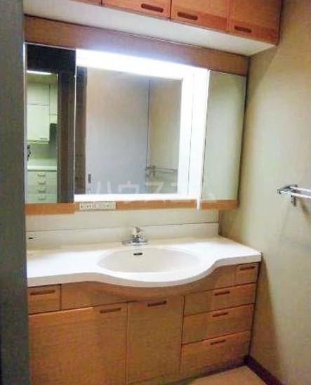 ハイアット2822 305号室の洗面所
