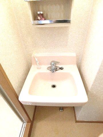 ダイナコートエスタディオ東公園 801号室の洗面所