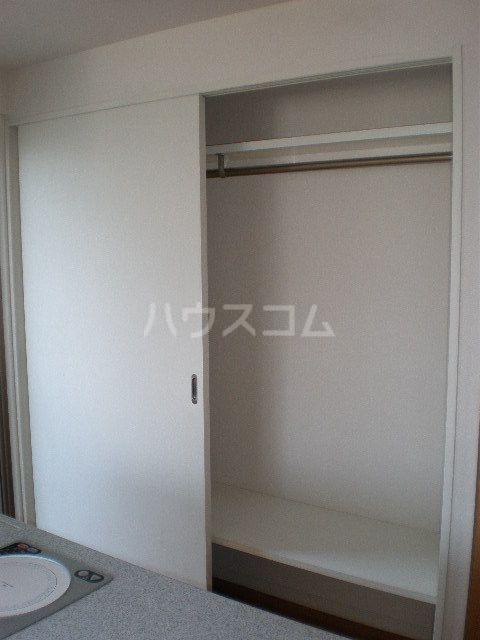 サヴォイバルビゾン 405号室の収納