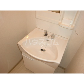 ファッショナルベアー弐番館 307号室の洗面所