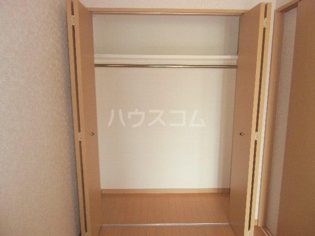 CASSIOPEIA HAKOZAKI 805号室の収納