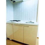 ウイングコートG館 202号室のキッチン