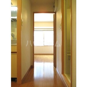 奈良屋アネックス 501号室の玄関