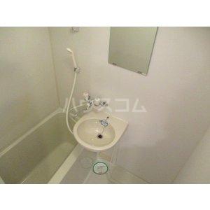 奈良屋アネックス 501号室の洗面所