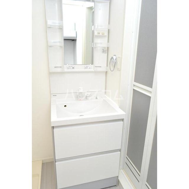 RAISE箱崎 202号室の洗面所