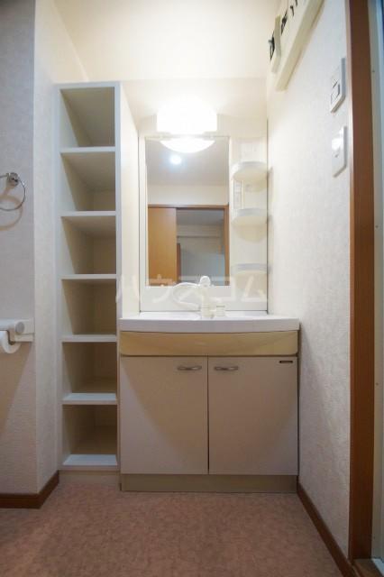 HF天神東レジデンス 302号室の洗面所