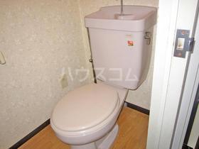 ブルースカイⅠ 601号室のトイレ