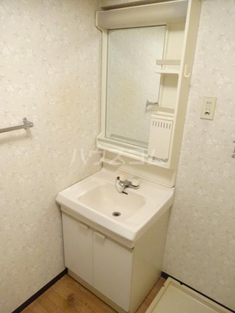 ブルースカイⅠ 601号室の洗面所