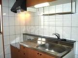 ルミナスハイム 107号室のキッチン