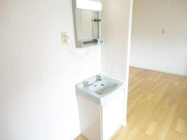 奥田ハイツ 203号室の洗面所