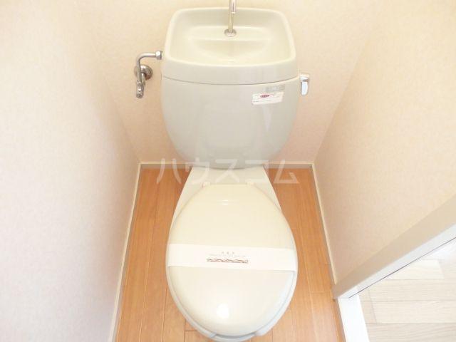 奥田ハイツ 203号室のトイレ
