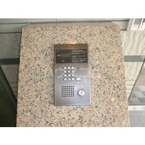 コアマンションルネス空港東 316号室のセキュリティ