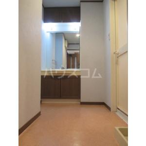 コアマンションルネス空港東 316号室の洗面所