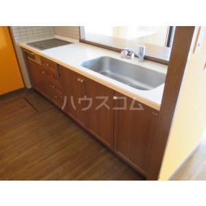 コアマンションルネス空港東 316号室のキッチン