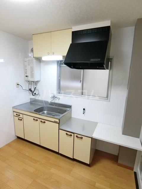 竜文堂第一ビル 302号室のキッチン