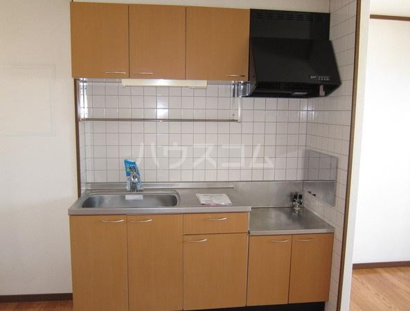 コーポマロニエA棟 202号室のキッチン