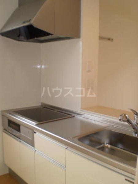 ハート・レイ彩佳 A201号室のキッチン