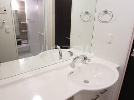 フェリオ D 203号室の洗面所