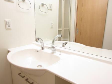 ヴェール 205号室の洗面所